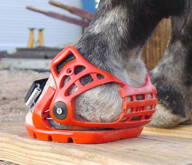 heel quarter view proper heel captivator height